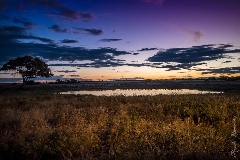 Etosha Namibia 0 nikon d750 Sigma 15-30mm f/3.5-4.5 Aspherical niebo horyzont odbicie mokradło Chmura świt zachód słońca atmosfera wieczór bagno