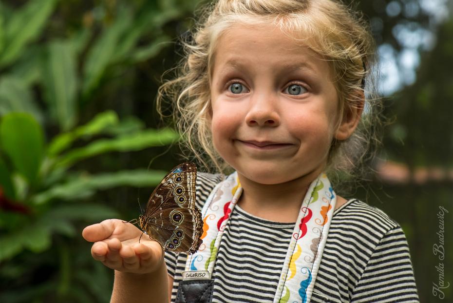 Kaja wielki motyl Panama 0 nikon d750 Nikon AF-S Micro-Nikkor 105mm f/2.8G IF-ED dziecko oko dziewczyna uśmiech Brzdąc zabawa trawa