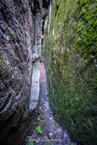 labirynt skalny na Szczelińcu|escape